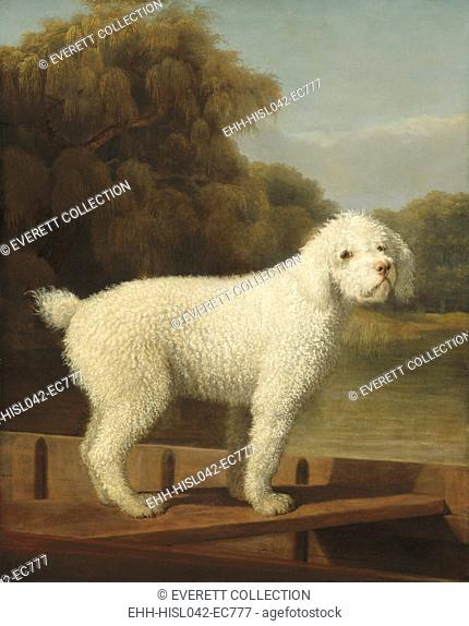 White Poodle in a Punt, by George Stubbs, 1780, British painting, oil on canvas. Self-taught painter Stubbs, was best known for his animals engravings and...