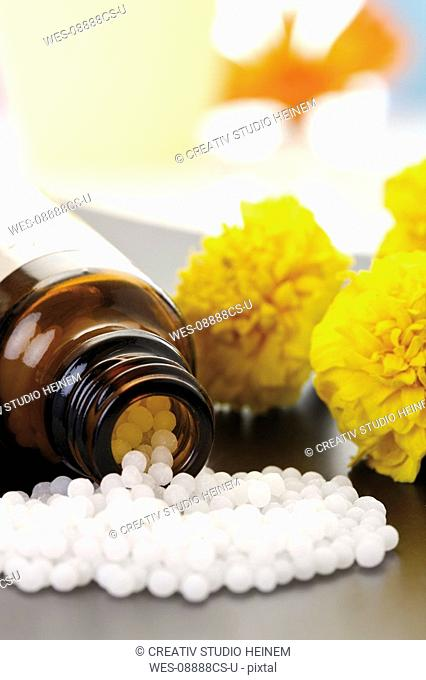 Medicinal flask with pills in front of Tagetes, close-up