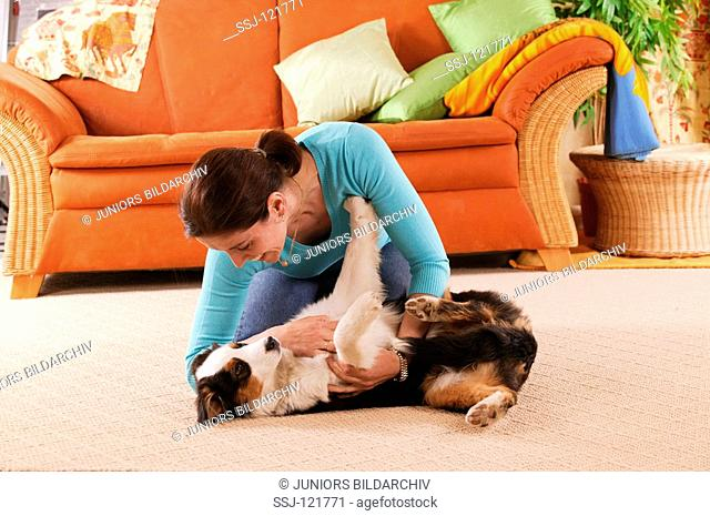 woman playing with young Border Collie dog