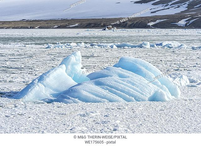 Palanderbukta, Icecap and pack ice, Gustav Adolf Land, Nordaustlandet, Svalbard archipelago, Norway