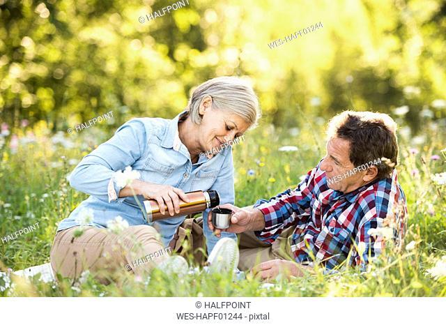 Senior couple having a picnic on a meadow
