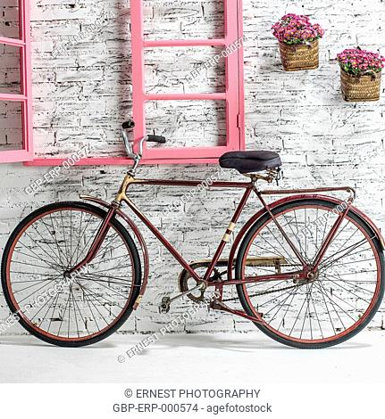 Bicycle, wall, window, vases, flowers, isolated, white background