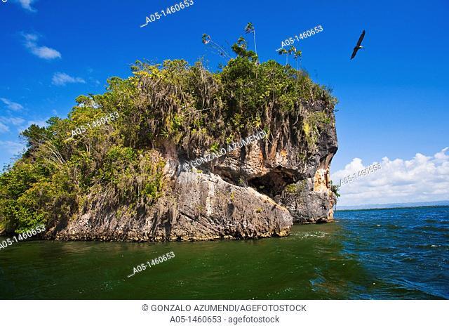 Mogotes or karts  Sea trip  Los Haitises National Park  Samana Bay  Dominican Republic  Caribbean