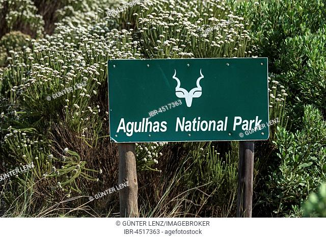Agulhas National Park, sign with Kudu, Province Western Cape, South Africa