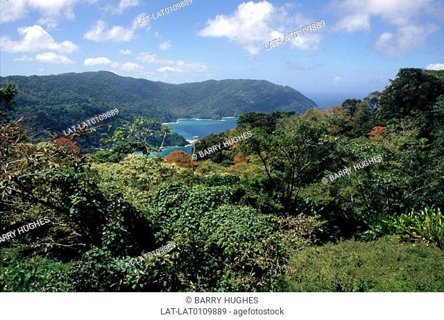 Tobago is one of two islands that make up the Republic of Trinidad and Tobago. The island is volcanic in origin,and is very hilly with a tropical climate