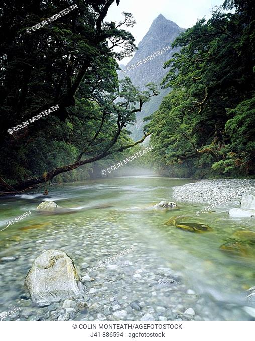 Clinton Rver Milford Track Fiordland National Park New Zealand