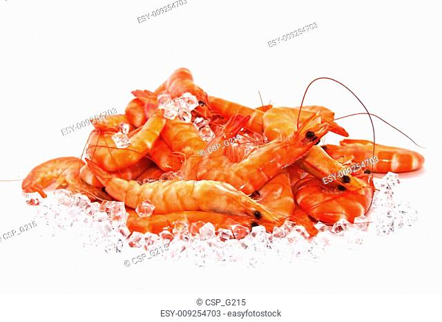 Prawns on Ice