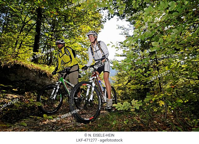 Mountain bikers passing a wooden trail, Reit im Winkl, Chiemgau, Upper Bavaria, Germany