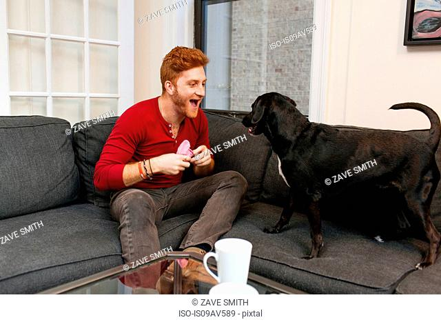 Young man sitting on sofa playing with pet dog, mouth open smiling