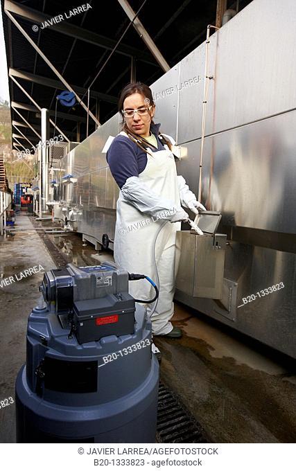 Azti-Tecnalia researcher collecting water samples for analysis, box washing machine, Mercabilbao fruits and vegetables wholesale market, Basauri, Bilbao