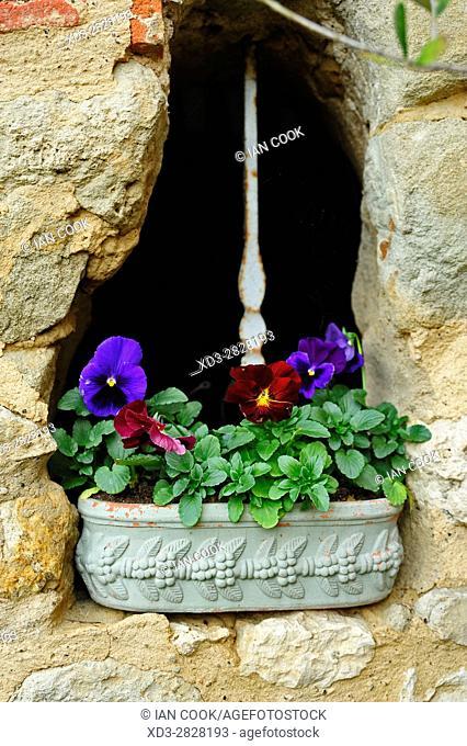 flowers and a stone wall, Lauzun, Lot-et-Garonne Department, Aquitaine, France