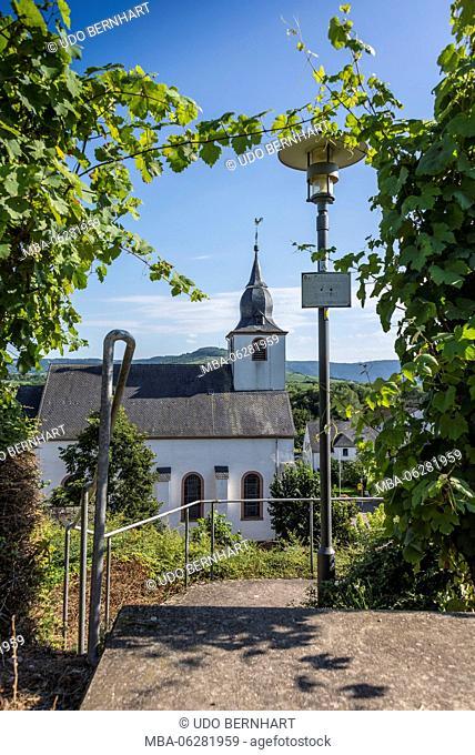Europe, Germany, Rhineland-Palatinate, district Trier-Saarburg, the Moselle, Mittelmosel, roman wine road, Klüsserath, legend way