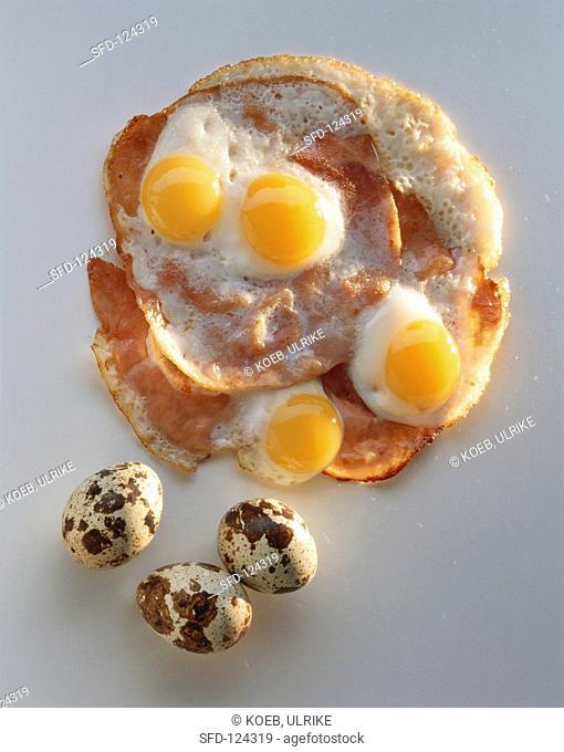 Fried Quail Eggs on Slices of Ham, Whole Quail Eggs