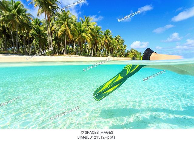 Diver's fins in tropical water, Bora Bora, French Polynesia