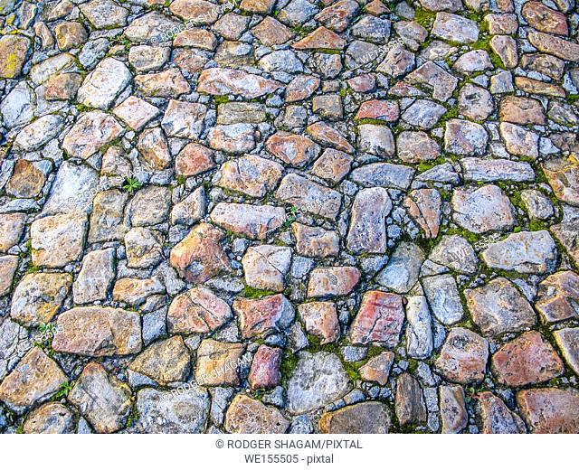 Very old cobble-stoned road imbedded with moss. Cape Town, South Africa