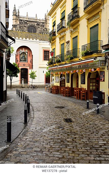 Cobblestone Argote de Molina street with cafe ending at the north side of the Seville Cathedral