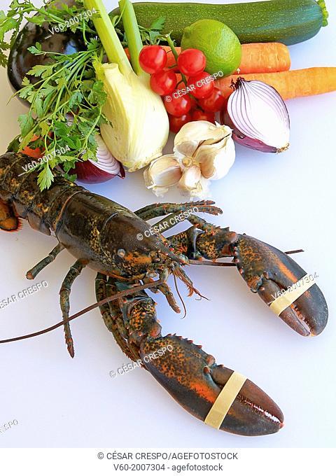 -Lobster and Vegetables- Mediterranean Food