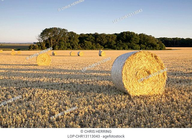 England, Norfolk, Clippesby. Hay bales at Clippesby in Norfolk