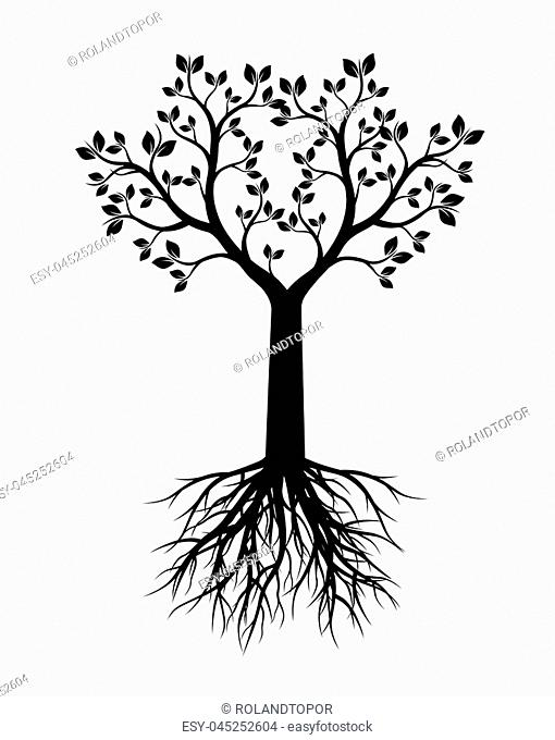 Black Tree with Leaves and Roots. Vector Illustration and graphic element