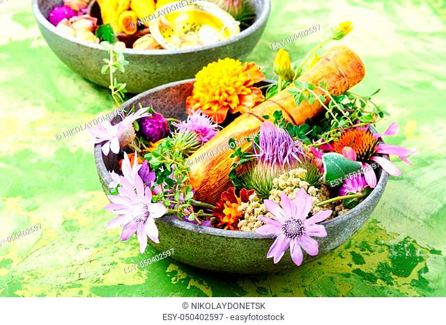 Various raw medical herbs and flowers. Alternative medicine concept. Assorted natural medical herbs
