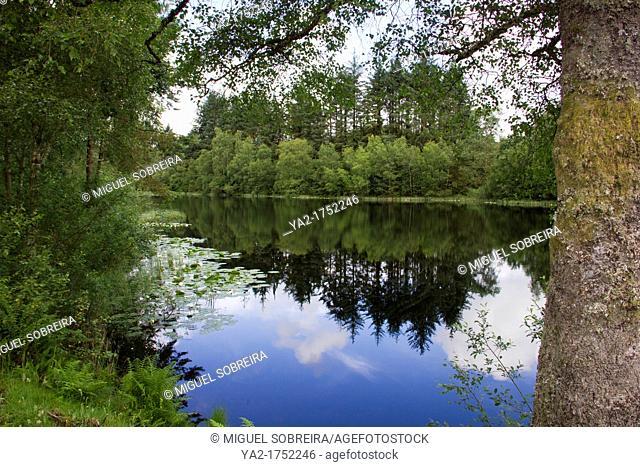 Bruntis Loch in Kirroughtree Forest in Galloway - Scotland