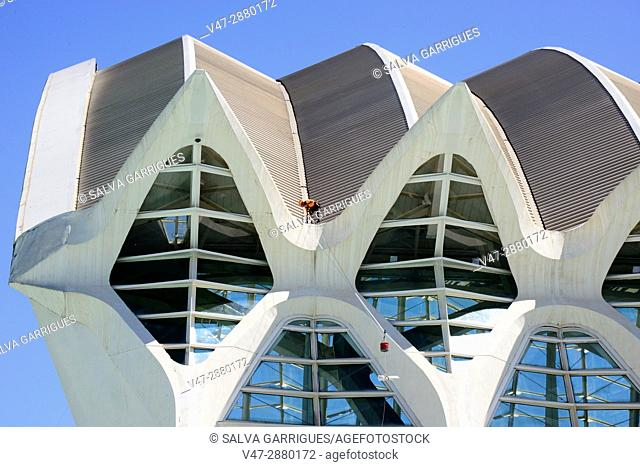 abstract, America Wild, architecture, art, building, Calatrava, city, City Of Arts And Sciences, Ciudad de las Artes y de las Ciencias, climbing