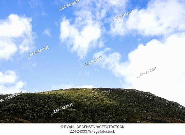 Scenic sunlight landscape on the top of a hill with simplistic detail and fluffy white clouds. Cradle Mountain serenity