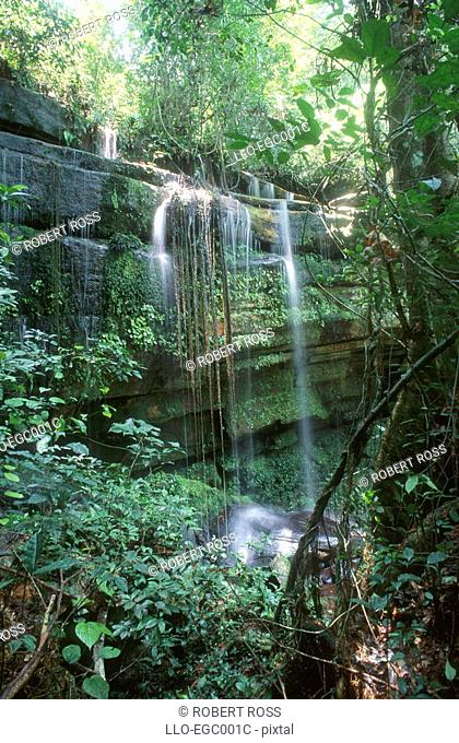 A Waterfall in a Dense Tropical Forest  Lagoue Camp, Ivindo National Park, Gabon, West Africa