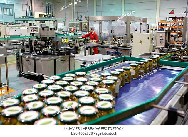 Labeling and packaging canned vegetables, Green bean, Canning Industry, Agri-food, Logistics Center, Grupo Riberebro, Alfaro, La Rioja, Spain