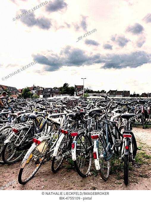 Bicycles parked at a bicycle park, parking lot, Ghent-St-Pieters station, Ghent, Belgium