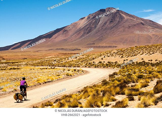 Cyclist riding near the Volcano Tuzgle, Department of Susques, Province of Jujuy, Argentina