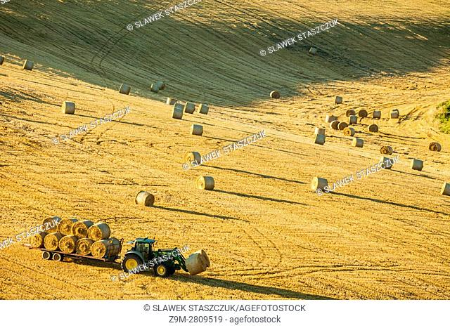 Harvest in South Downs National Park near Brighton, East Sussex, England