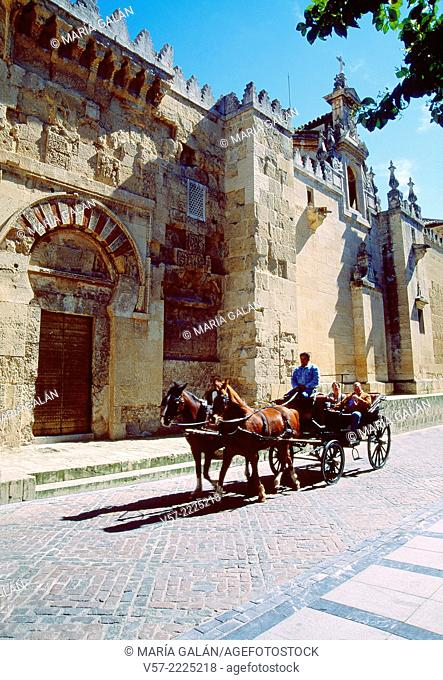Horse-drawn carriage by the Mosque. Cordoba, Spain