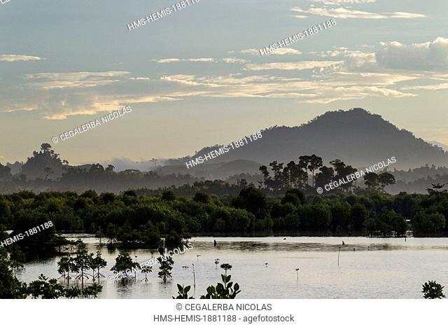 Indonesia, Sumatra Island, Aceh province, Calang, First light of day on the mangrove swamp
