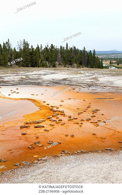 Grand Prismatic Spring in Yellowstone's Midway Geyser Basin, Yellowstone National Park, Wyoming, USA