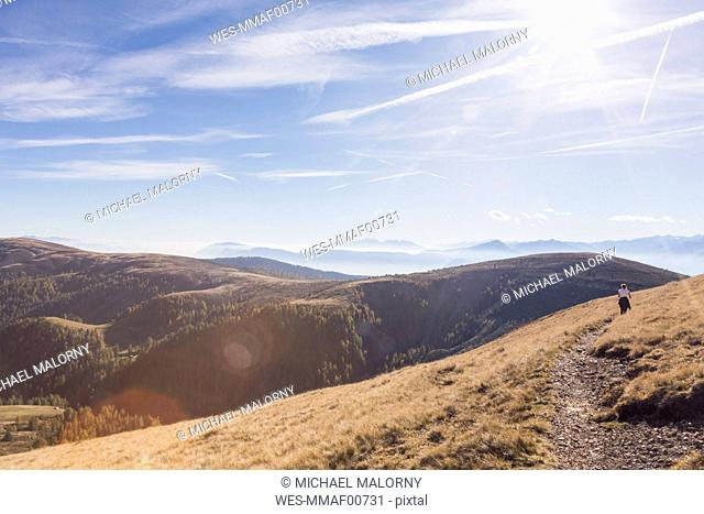 Italy, South Tyrol, Dolomites, Hafling, female hiker at dried mountain meadow in late summer