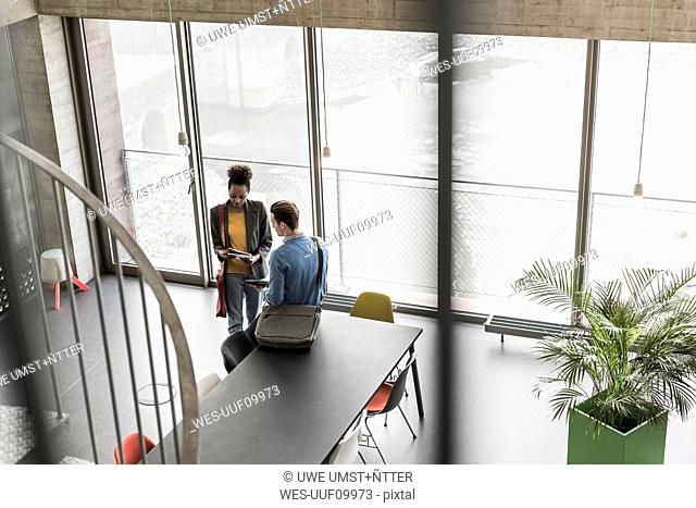 Young business people discussing files in office