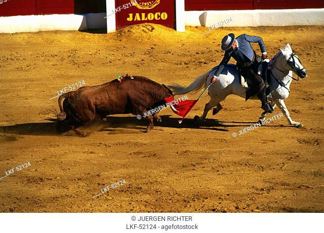 Bull fight on horse, Rejoneo, Feria, Zafra, Province Badajoz, Extremadura, Spain