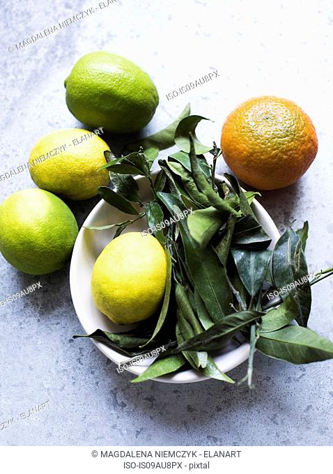 Overhead view of citrus fruit and leaves in bowl