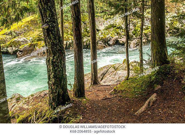 Cheakamus River, near Whistler, BC, Canada