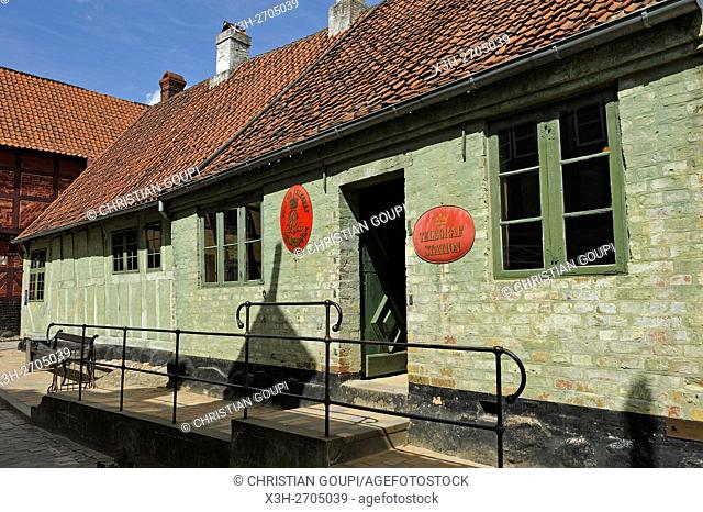 Den Gamle By or The Old Town, open air town museum that consists of 75 historical buildings collected from 20 townships in all parts of the country (originally...