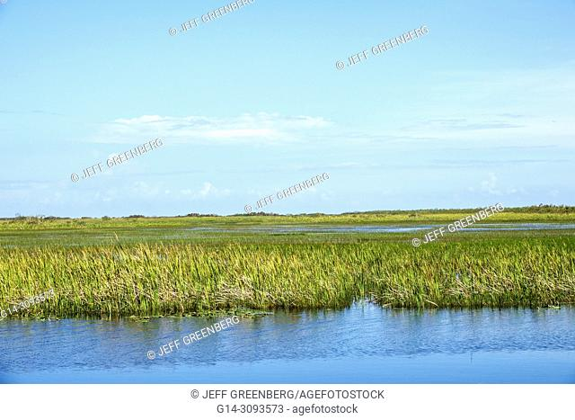 Florida, Miami, Tamiami Trail Route 41 highway, Everglades, sawgrass, east–west canal, water