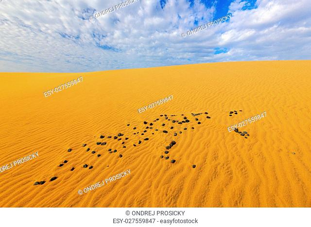 Summer dry landscape in Africa. Sand waves in the wild nature