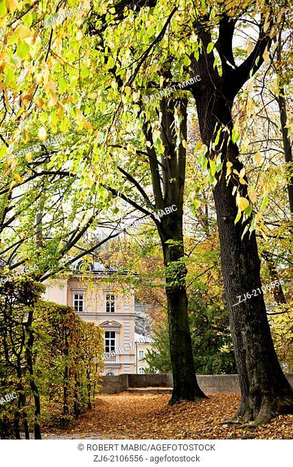 Park in Salzburg. Beerch hedge. Mature lime trees. Mirabell Gardens Austria