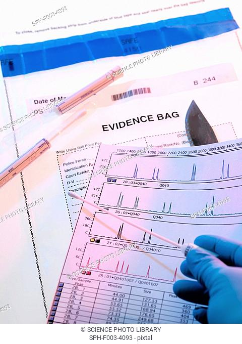 Forensic evidence. DNA deoxyribonucleic acid swab and test results