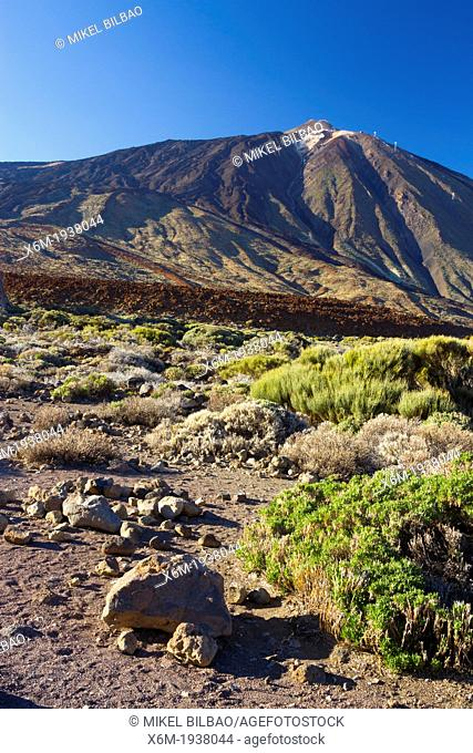 Teide volcano and lava formation. Teide National Park. La Orotava, Tenerife, Canary Islands, Atlantic Ocean, Spain