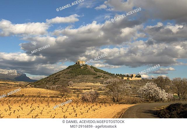 San Asensio, Davalillo castle and wine scape in spring time, La Rioja wine region, Spain, Europe