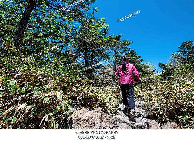 Hiker hiking up rocky trail to Hallasan the highest mountain in Korea, Jeju Island, South Korea