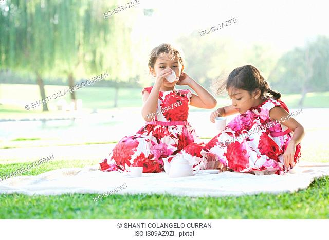 Two young girls playing with tea set on blanket on grass