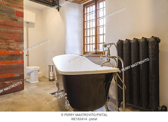 White and black freestanding chrome claw foot bathtub next to hot water heating radiator and high tank toilet in main bathroom with birch tree bark imitation...